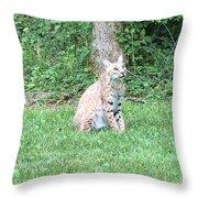 Ks Bobcat Throw Pillow