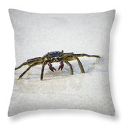 Kua Bay Crab 1 Throw Pillow
