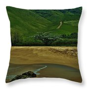 Kula'ili'i Beach Throw Pillow
