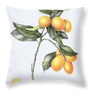 Kumquat Throw Pillow by Margaret Ann Eden