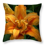 Kwanzaa Lily Watercolor Throw Pillow