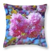 Kwanzan Cherry Blossoms Throw Pillow