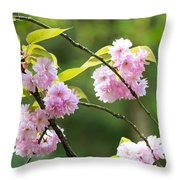 Kwanzan Cherry Bossom Flowers Throw Pillow