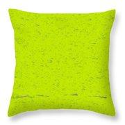 l13-00E8C2-4x3-2000x1500 Throw Pillow