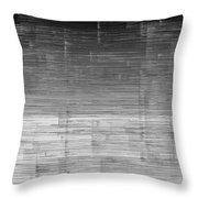 L19-10 Throw Pillow