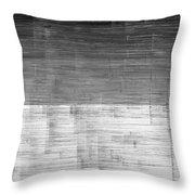 L19-8 Throw Pillow