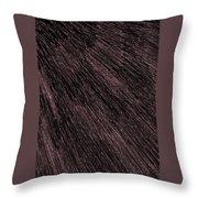 L2-04-236-168-174-2x3-1000x1500 Throw Pillow