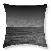 L21-39 Throw Pillow