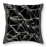 L6-94-216-224-255-3x4-1200x1600 Throw Pillow
