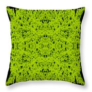 L8-14-172-213-0-1600x1600 Throw Pillow