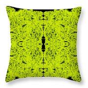 L8-14-215-244-0-1600x1600 Throw Pillow