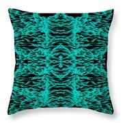 L8-64-0-225-212-1600x1600 Throw Pillow