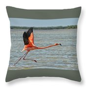 La Huida  Throw Pillow