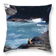 La Jolla Cove Throw Pillow
