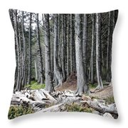La Push Beach Trees Throw Pillow