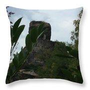 La Roche Nature France Throw Pillow
