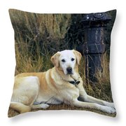 Lab And Fire Hydrant Throw Pillow