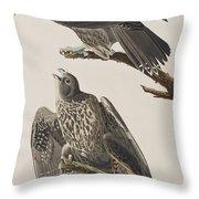 Labrador Falcon Throw Pillow