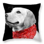 Labrador In Black And White  Throw Pillow