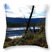 Labrador Pond Throw Pillow