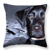 Labrador Retriever Thoughts  Throw Pillow