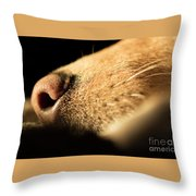 Labrador Scent Throw Pillow