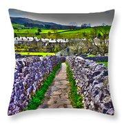 Labyrinth Of Grassington Throw Pillow