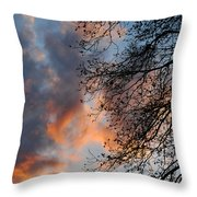 Lace In The Sunset Throw Pillow