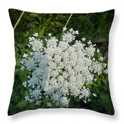 Lace Of The Queen Throw Pillow by Carrie Viscome Skinner