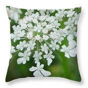 Lace On Stems Throw Pillow