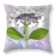 Lacecap Hydrangea Throw Pillow