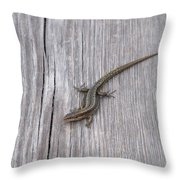 Lacertus Throw Pillow