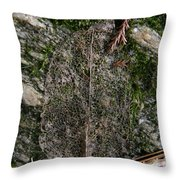 Lacey Leaf Throw Pillow
