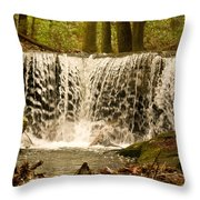 Lacy Waterfall Throw Pillow
