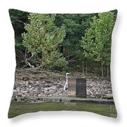 Ladies And Gentleman Thank You For Coming Throw Pillow