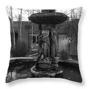 Ladies In Freezing Water Throw Pillow