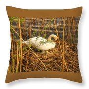 Lady And Her Eggs Throw Pillow