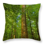 Lady And The Tree Throw Pillow