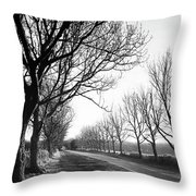 Lady Anne's Drive, Holkham Throw Pillow