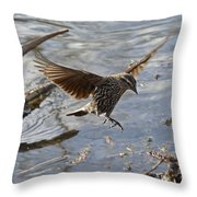 Lady Blackbird Throw Pillow