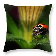 Lady Bug 1 Throw Pillow