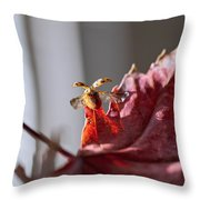 Lady Bug Flight Throw Pillow