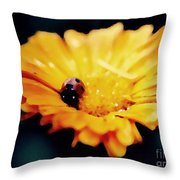 Lady Bug Walking The Line Throw Pillow