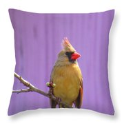 Rare Yellow Cardinal On A Cherry Branch Throw Pillow
