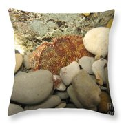 Lady Crab Throw Pillow