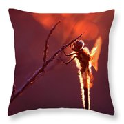 Lady In Red II Throw Pillow