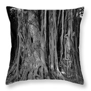 Lady In The Banyans Throw Pillow