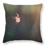 Lady In The Marsh Throw Pillow
