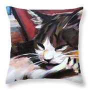 Lady Of The House Close-up Throw Pillow
