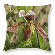 Lady Slipper 2 Throw Pillow